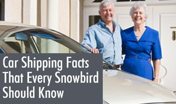4 Things Snowbirds Must Know Before Shipping A Car – Infographic